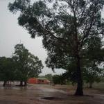 Uma bela paisagem da chuva molhando o terreno arenoso em meio ao Cerrado