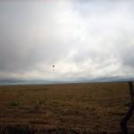 Voando por sobre um imenso pasto. Brinquei de boiadero e toquei o gado